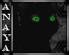 A+ Black Kitten