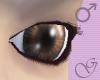 Beneficium Eyes Brown M