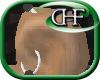 HFD L Scaffold Daith M