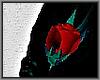 Lapel Rose