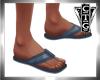 CTG  BLUE FLIPS