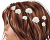 TF* White Hair Flowers