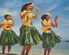 seXy HULA GROUP DANCE