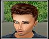 Brown Male Hair