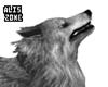 [AZ] Wolf, Little Red