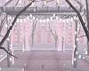 Pink Christmass Pergola