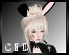 !C! Bunny Blonde!