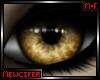M! Unisex Wolf Eyes