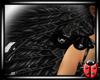 Rio Wings Black