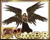QMBR Wings Quad Brw M/F