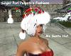 Ms Santa Colorful Hat