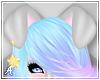 A| Qia Ears 1