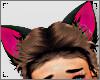 ♥ Cat Ears