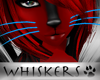 Whiskers :Cyan Whiskers