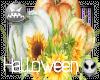 (D)Halloween V7