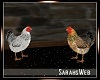 Farmhouse Chicken Pair