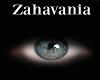 𝓩- Azure < Eyes Male