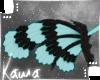 | Shiku | Wings 2