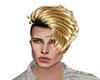 blond mesh 37