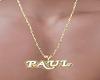 PAUL GOLD NECKLACE