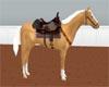 ~Western Palomino/sound