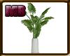 [9V2] Plant A