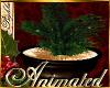 I~Christmas Pine Bowl
