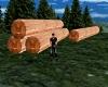 Cut Cypress Logs