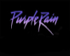 PURPLE RAIN CLUB