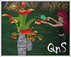 QnS Tropic Parrot/sound