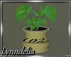 ~L~ Small Plant - Mesh
