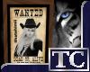 ~TC~ Himi Wanted 1