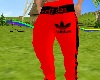 Max-Pants   Red