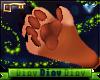 *D* Lion Hand Paws