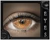 [eyes] Ale