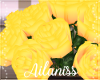 A- ROSES YELLOW