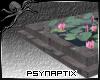 [PSYN] Lily Pond