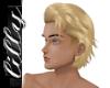 Dirty blonde sexy hair