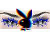playboy eyes