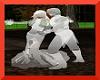 ~D~Ball rm Ghost couple