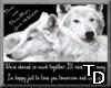 *T DDF Wolf Radio(prsnl)