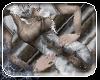 -die- Arctic hunter (lt)