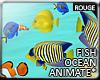 |2' Ocean Fish *Reef*