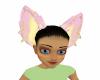Qaskuran Wolf Ears