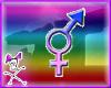 Trans Pride Sticker