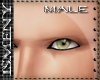 [Is] NO Eyebrows Male