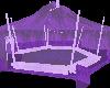 (e) purplelised circus