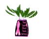 BC Awareness Plant 1