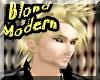 Modern Blond Hair