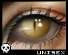 Unisex Jaguar Eyes